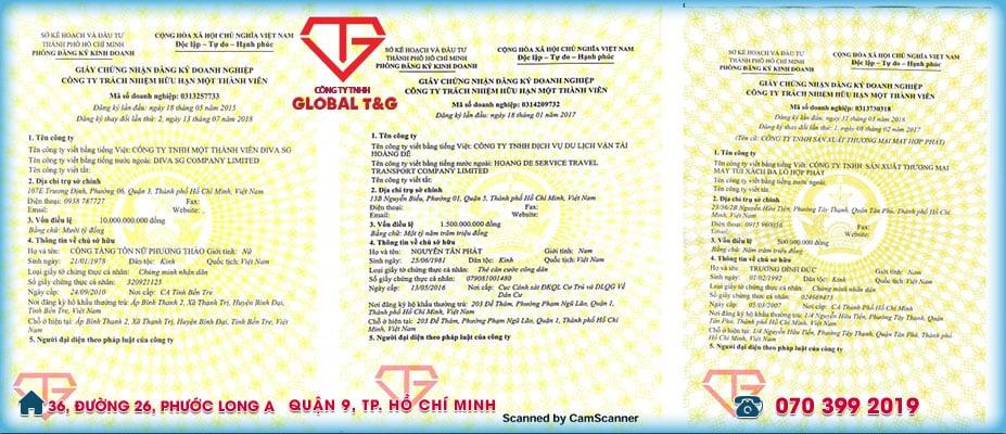 giay-phep-kinh-doanh-MTV-duoc-global-thuc-hien