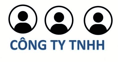 Nhà đầu tư có thể mua phần cổ phần vốn góp của thành viên công ty TNHH